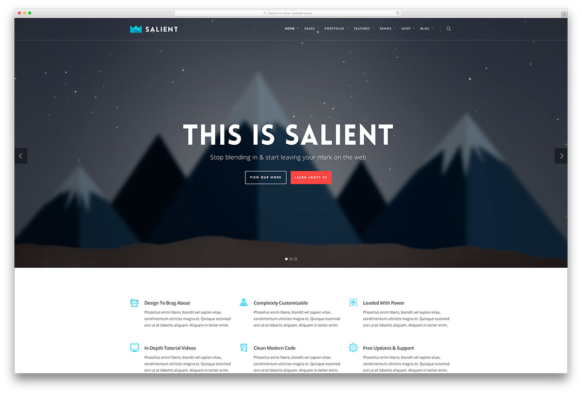 salient-popular-multipurpose-wordpress-theme