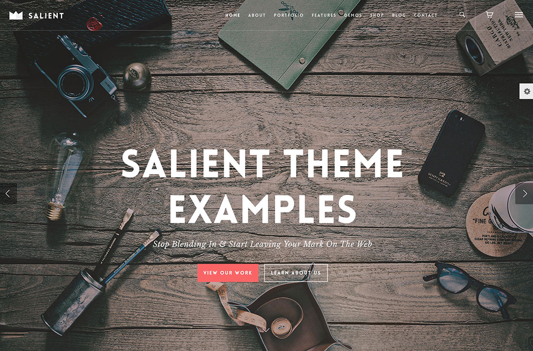 30 Websites Using Salient Theme – Stunning Salient Theme Examples 2019