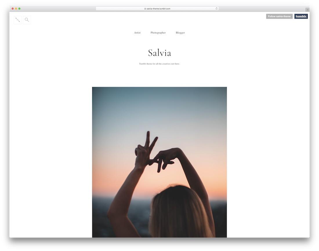 salvia free tumblr theme