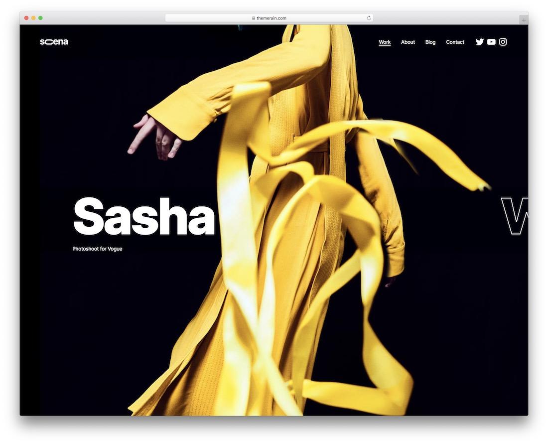 scena gallery wordpress theme