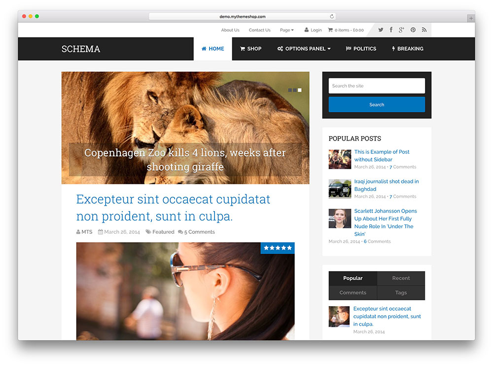 schema - classic blogging theme