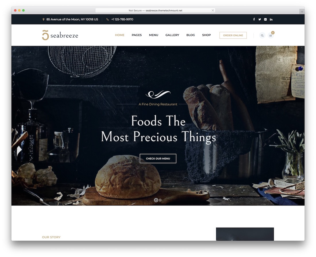 seabreeze best food wordpress theme