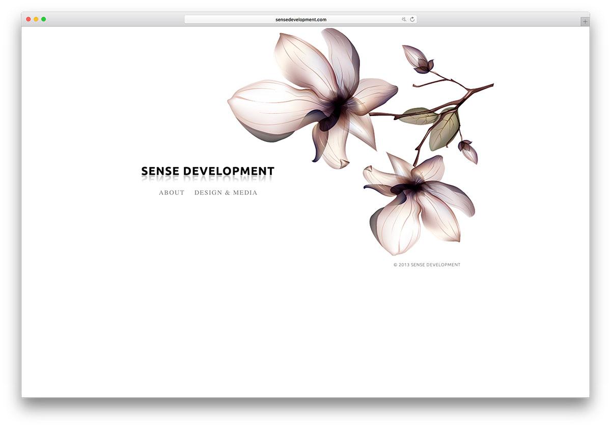 sensedevelopment-web-design-services-website-with-wix