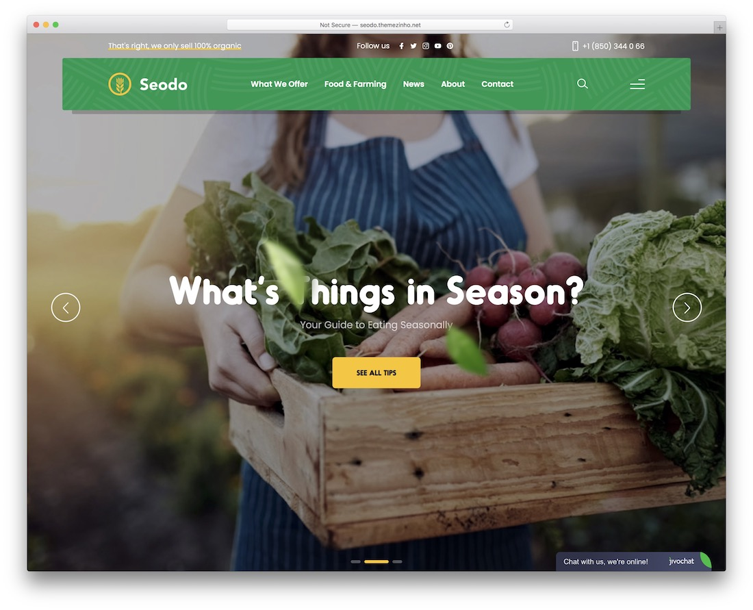 seodo farming wordpress theme