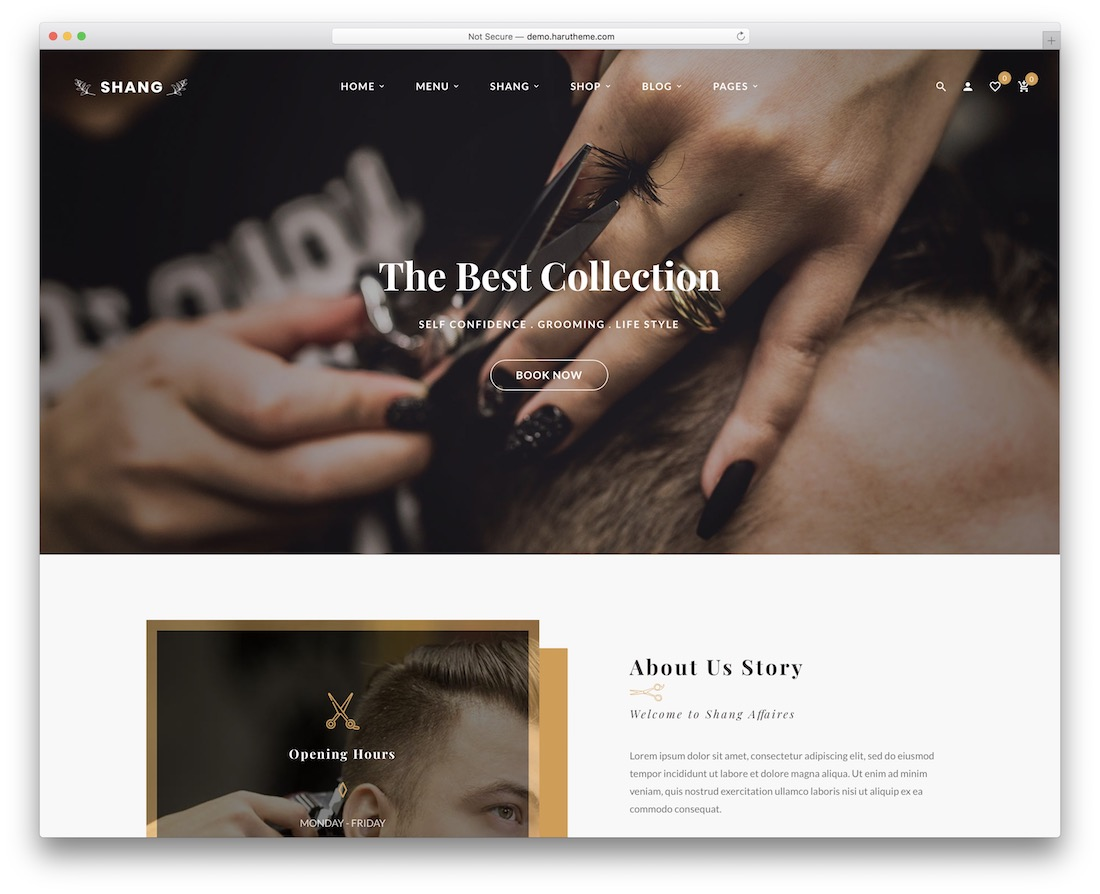 shang wordpress theme