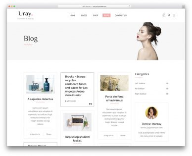 Shopify Blog Themes