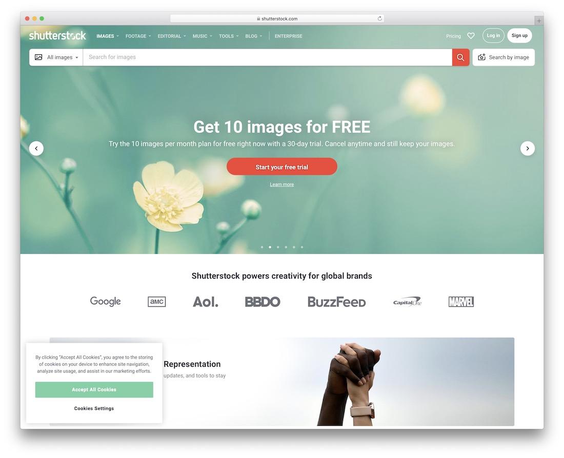 shutterstock vector images website