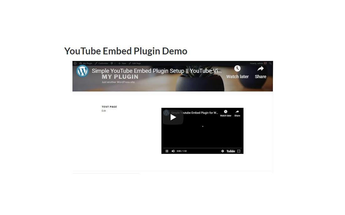 Functional WordPress YouTube Plugin