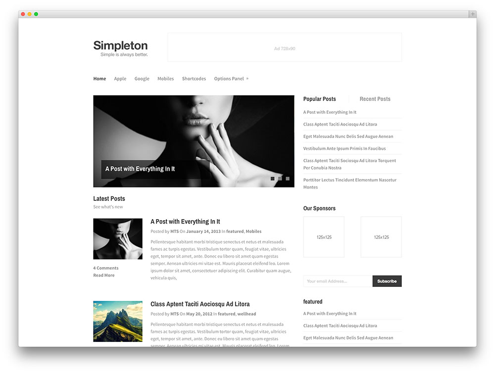 simpleton visionary minimal blog theme