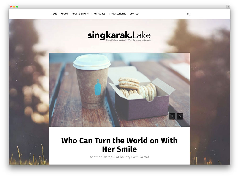 singkara - beautiful blog theme