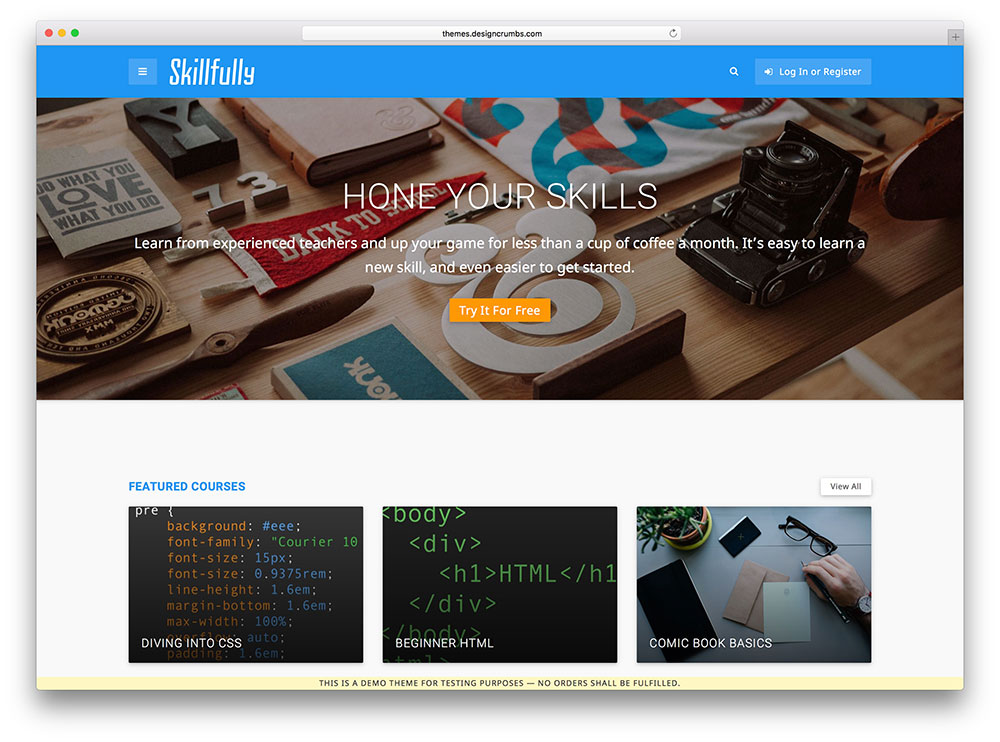 skillfully - online programming education theme