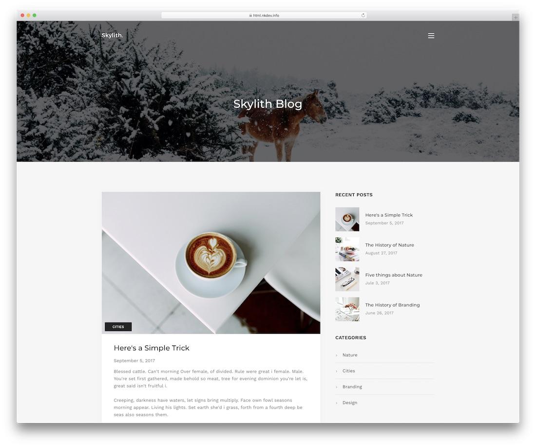 skylith blog website template