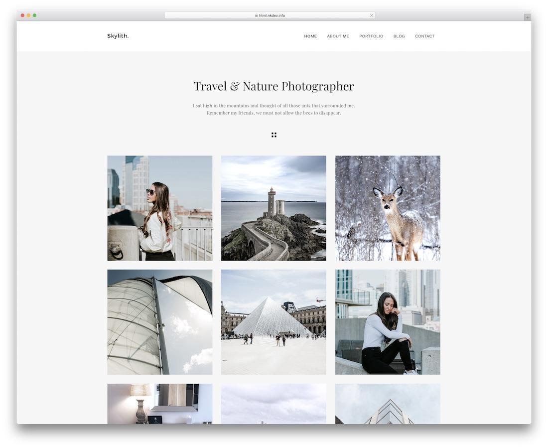 skylith minimal website template