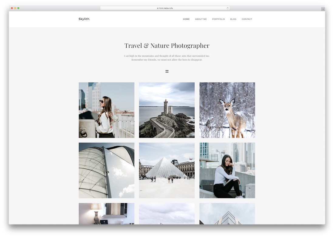 skylith photography website template