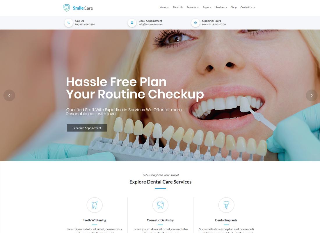 SmileCare   Medical & Dentist WordPress Theme