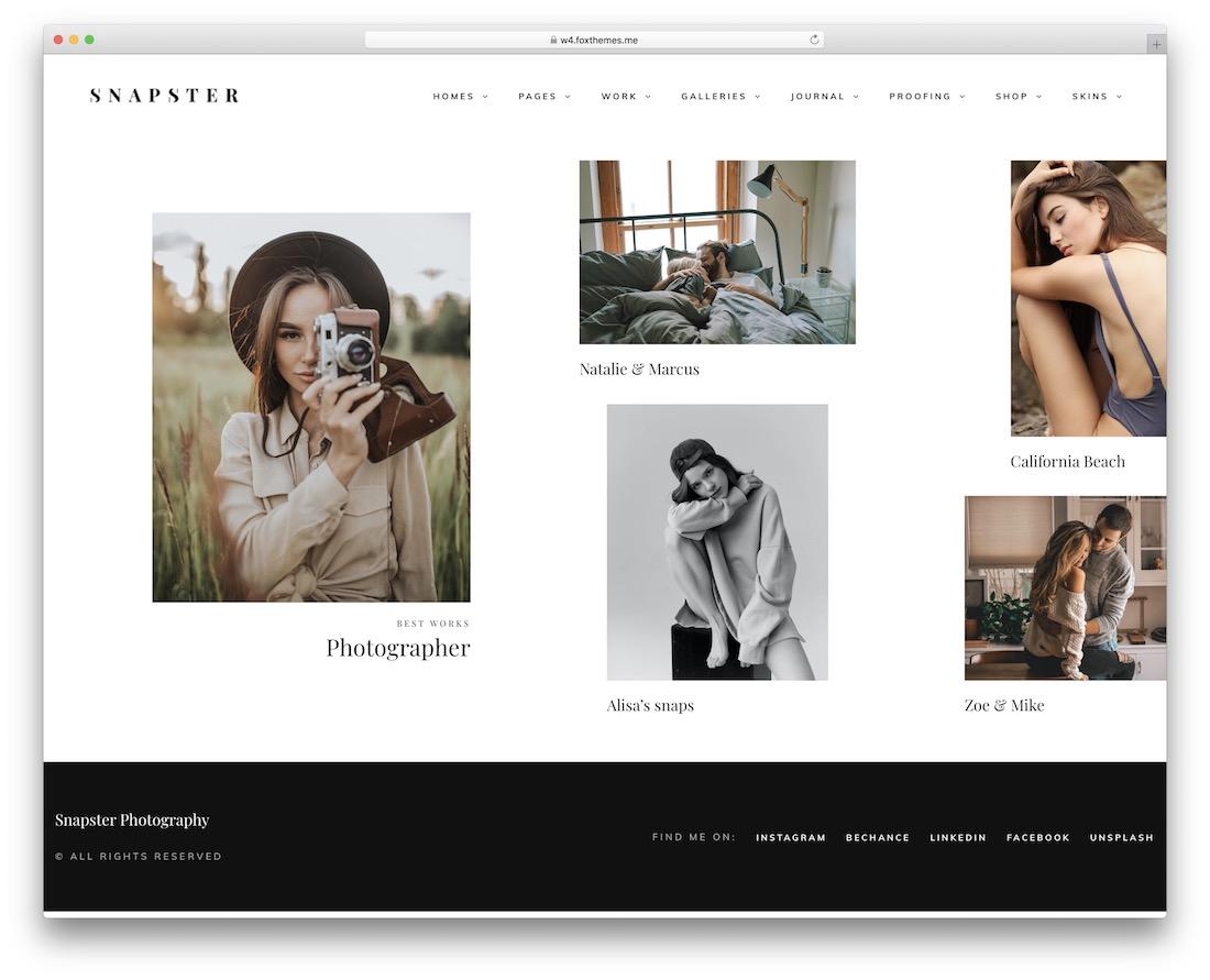 snapster professional wordpress theme