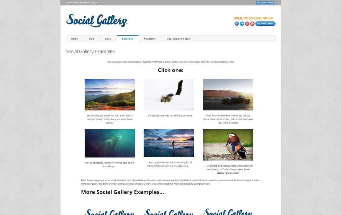 social gallery wordpress plugin