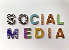 Social Media WordPress Themes And Plugins
