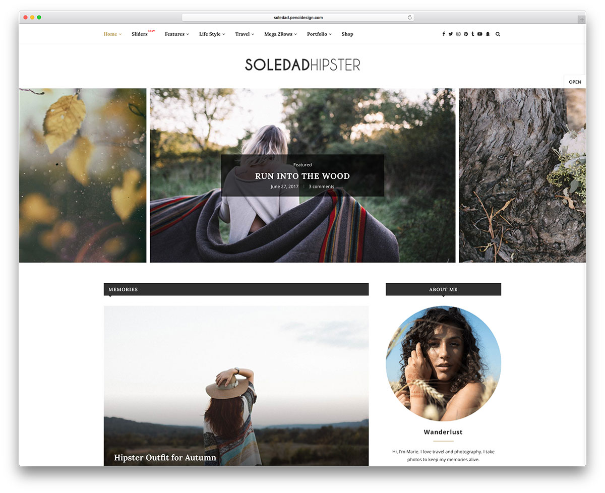 33 Most Popular Wordpress Blog Themes 2019 Colorlib