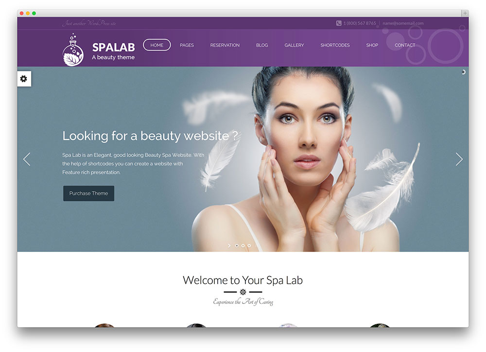 spalab beauty WordPress theme