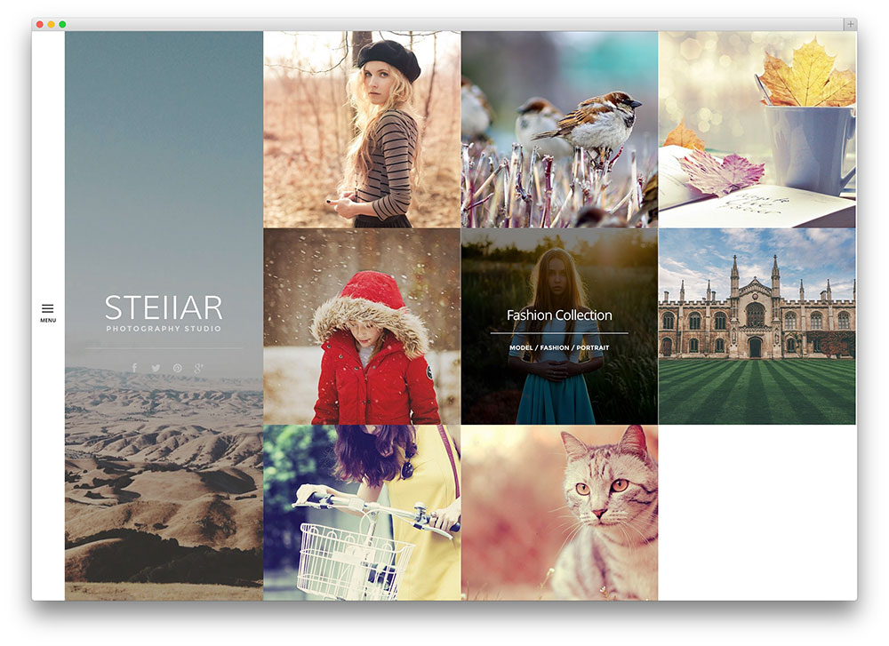 stellar pretty photographer theme