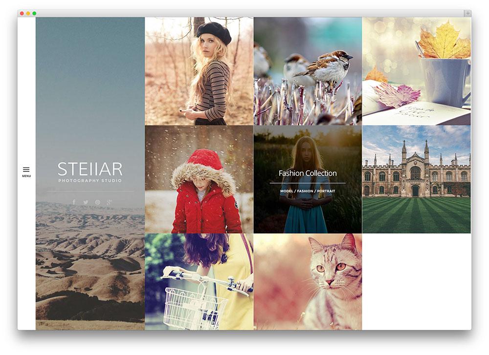 stellar pretty photographer theme