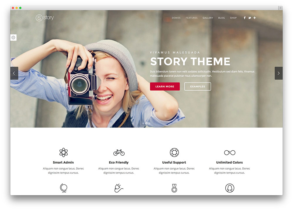 story - beautiful portfolio theme