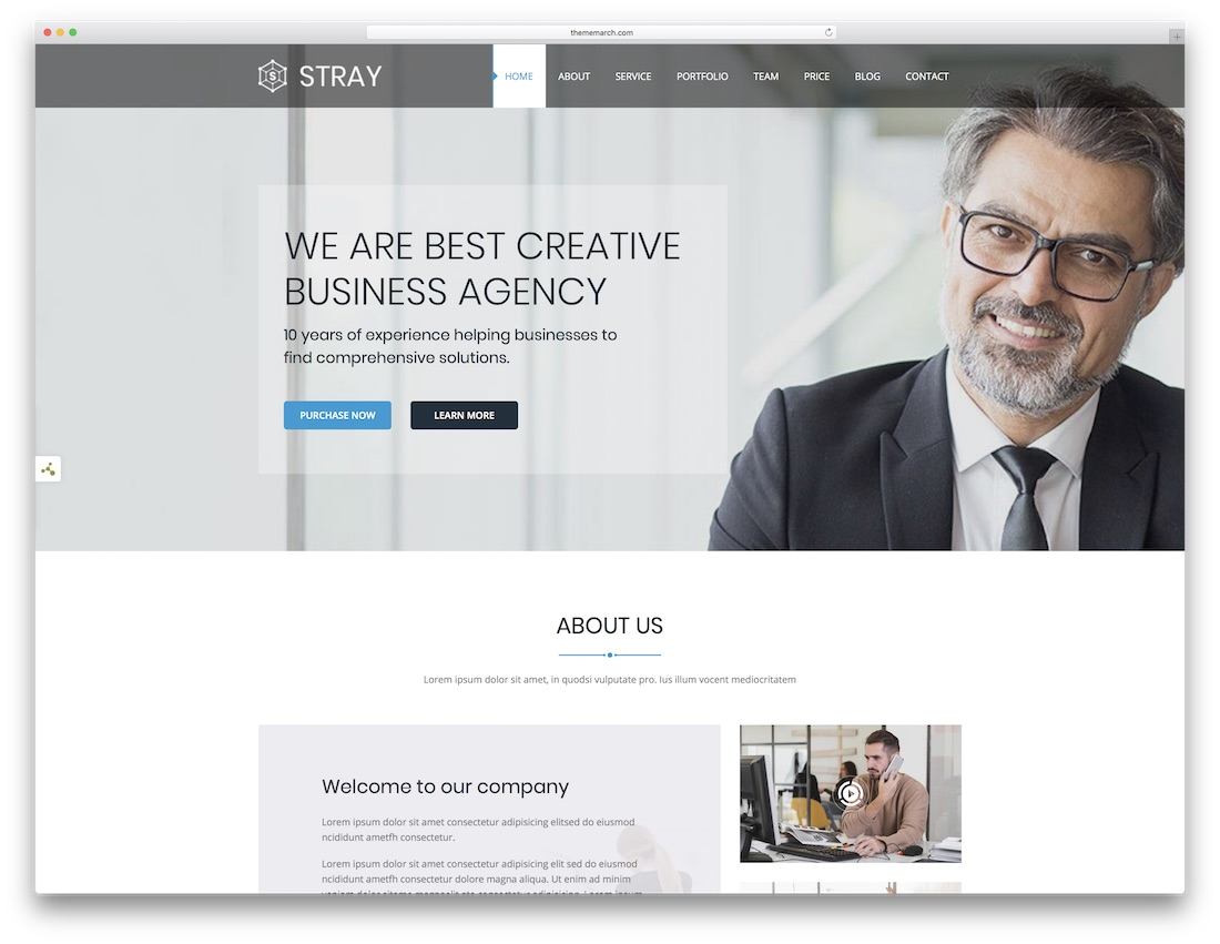 stray html5 one page website template
