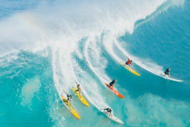 Surfing WordPress Themes