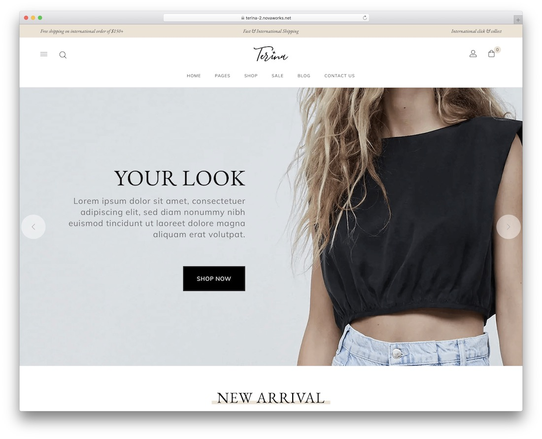terina flat design wordpress theme