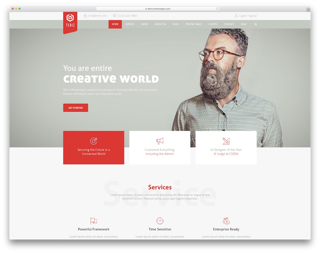 teriz simple bootstrap template