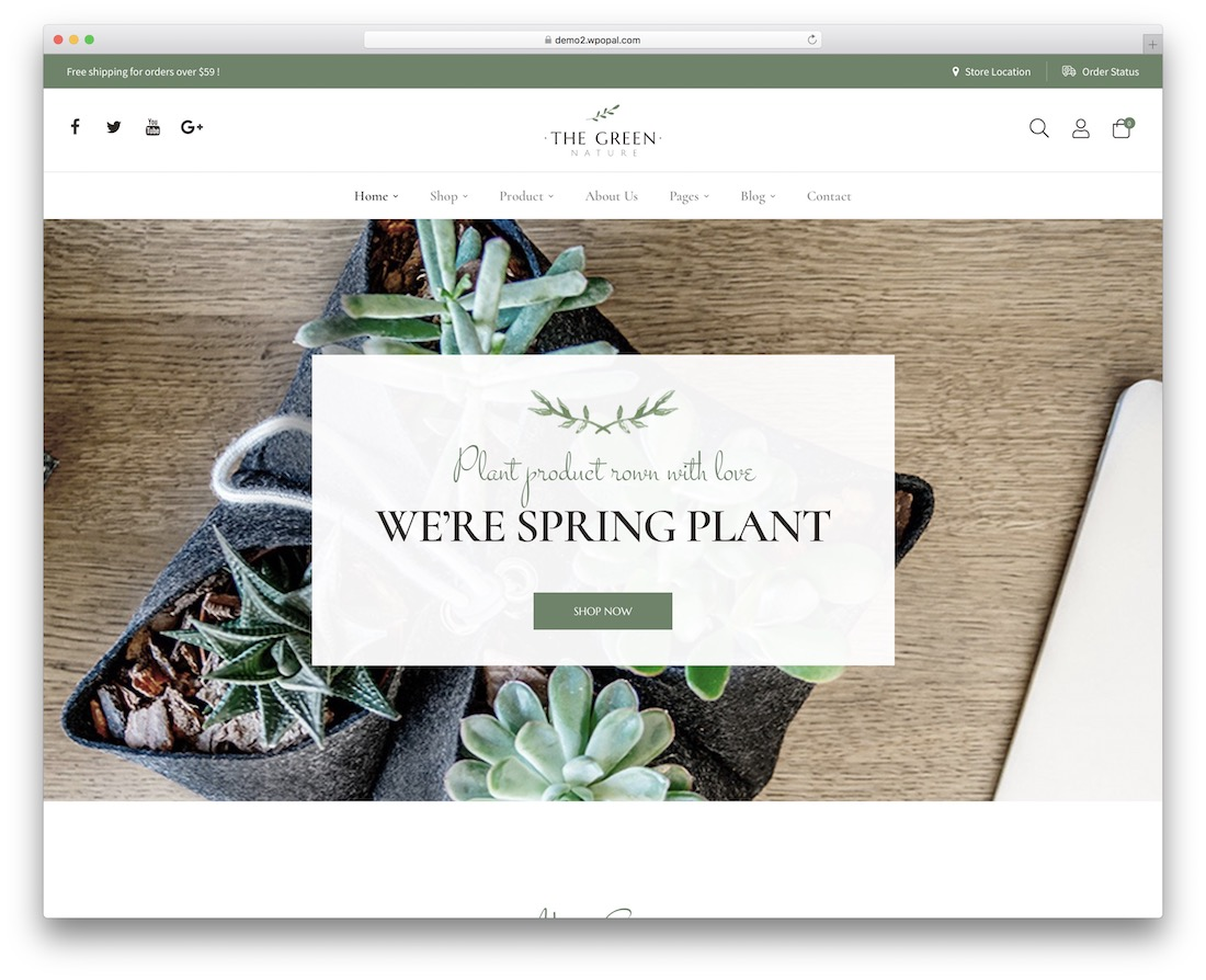 the green wordpress theme