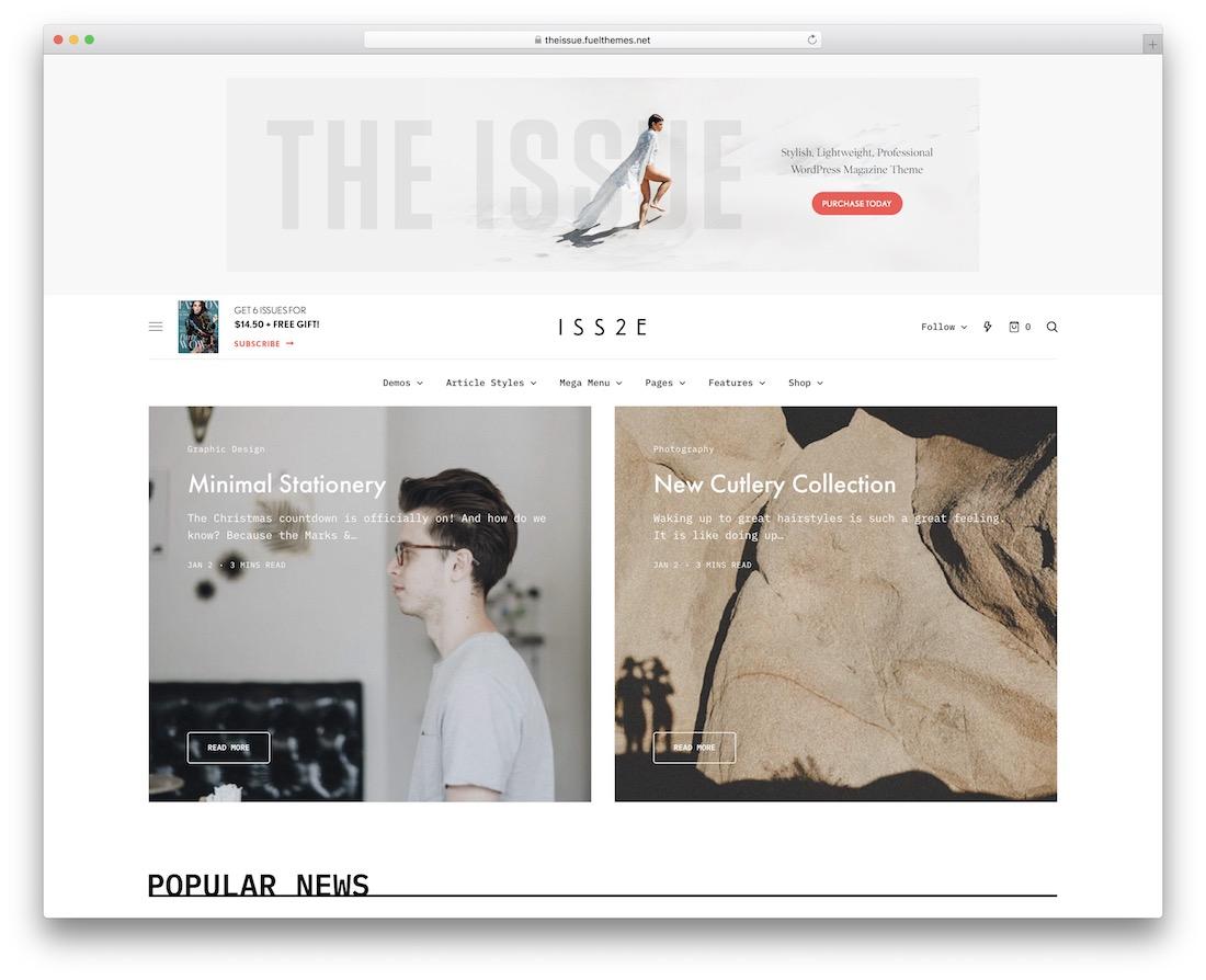the issue popular wordpress blog theme