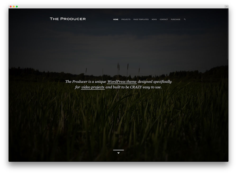 the producer production company theme