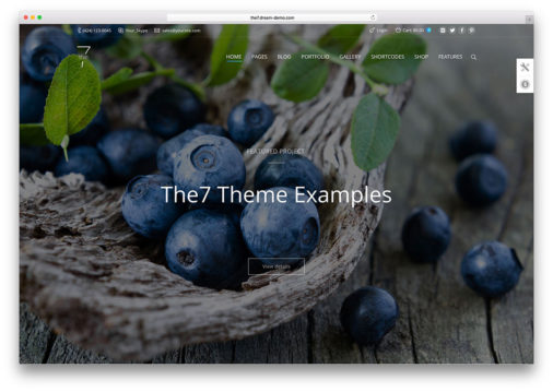 The7 Theme Examples