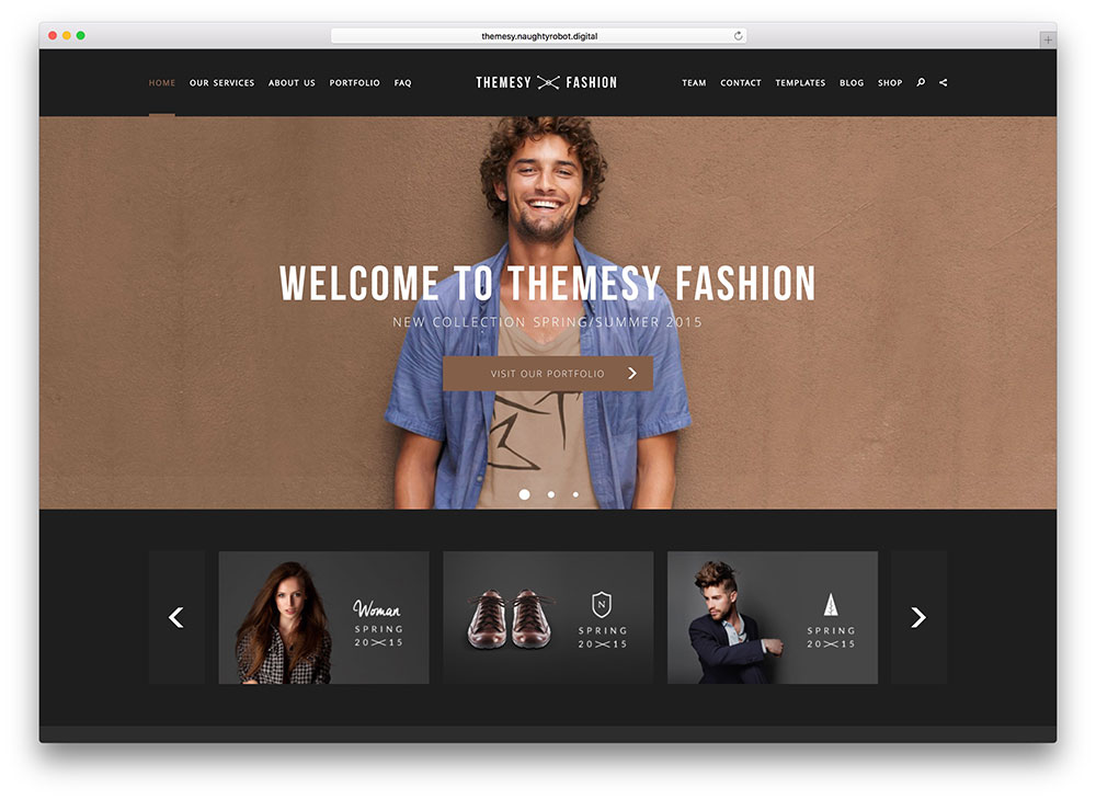 themesy - fashion wordpress theme