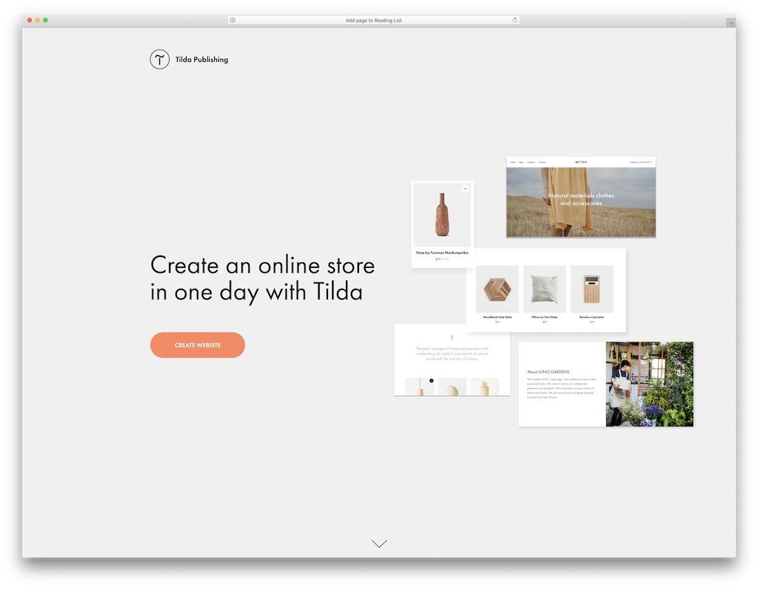 tilda website builder for online clothing store