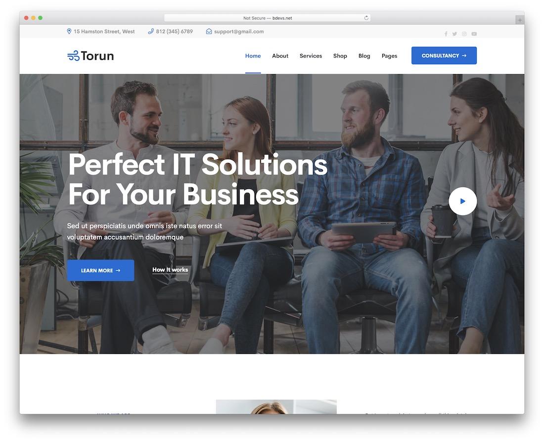 torun startup website template