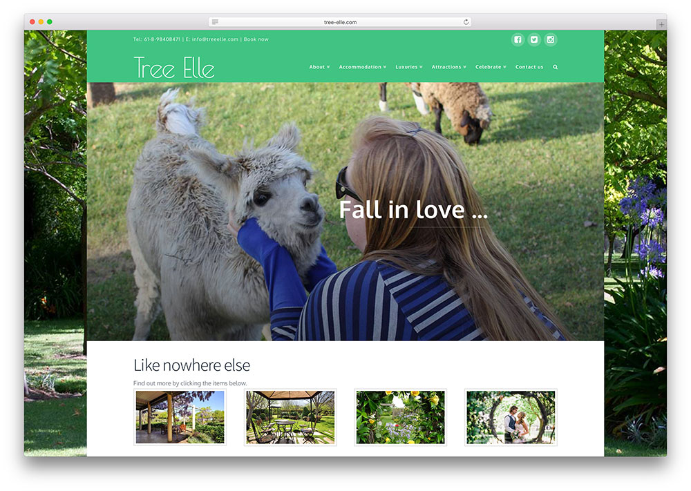 tree-elle-booking-website-example-with-x-theme