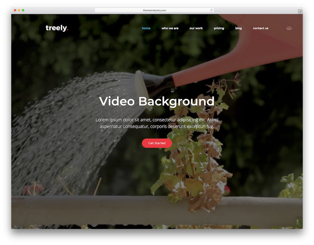 treely video website template