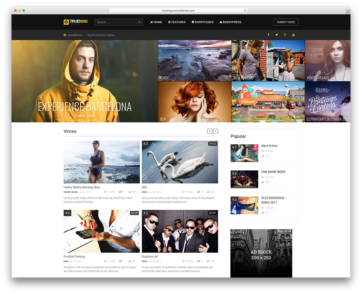 Best WordPress Video Themes For Embedded and Self Hosted