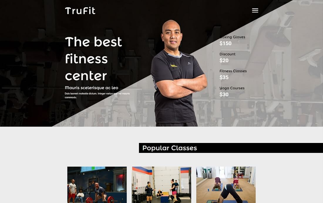 trufit free simple html template