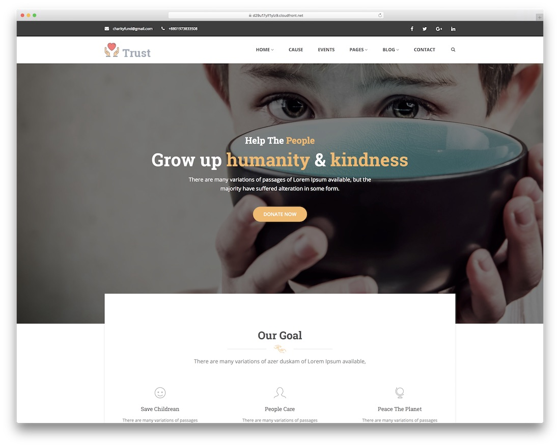 trust website template