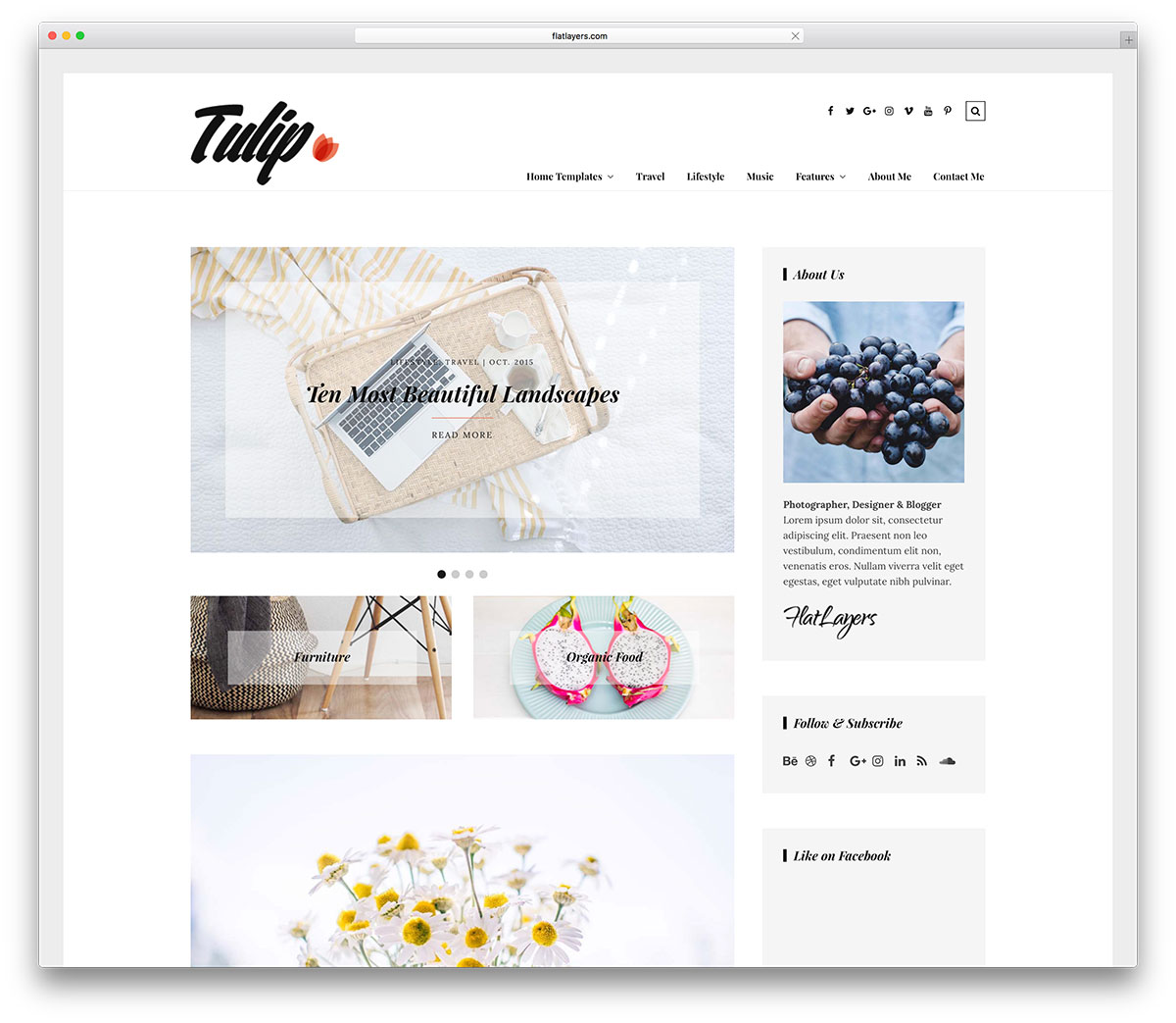 tulip-minimal-blog-wordpress-theme