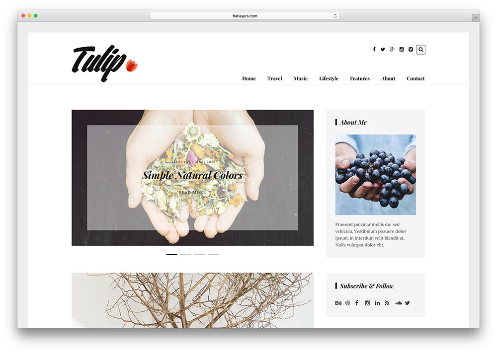 tulip-simple-food-blog-wordpress-theme
