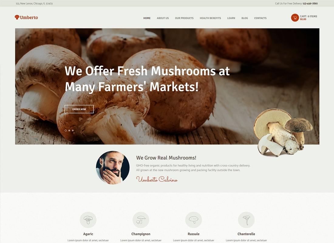 Umberto | Mushroom Farm & Organic Products Store WordPress Theme