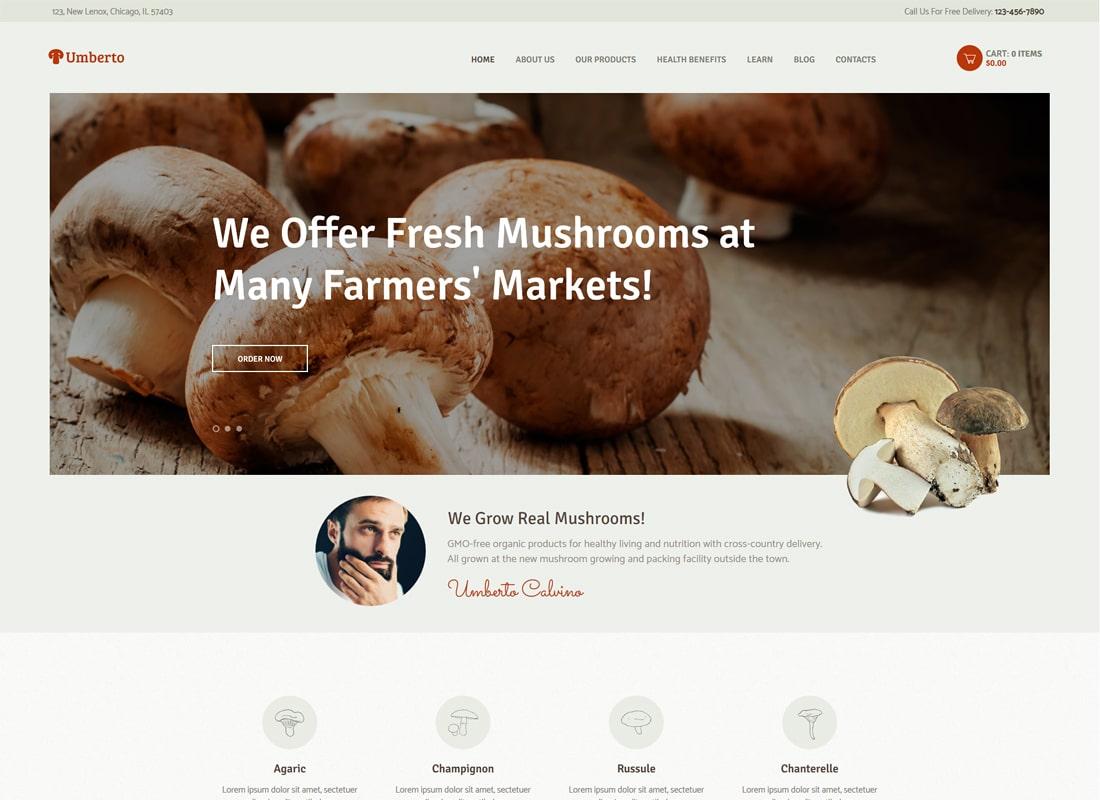 움베르토 | 버섯 농장 및 유기농 제품 매장 WordPress 테마