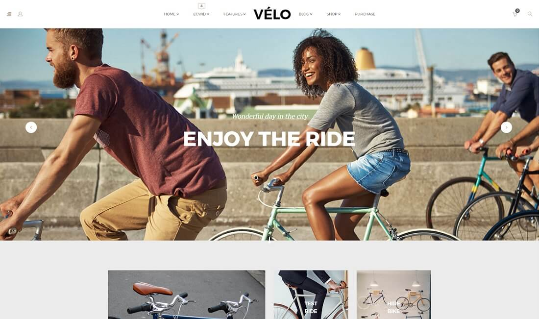 velo ecwid compatible theme