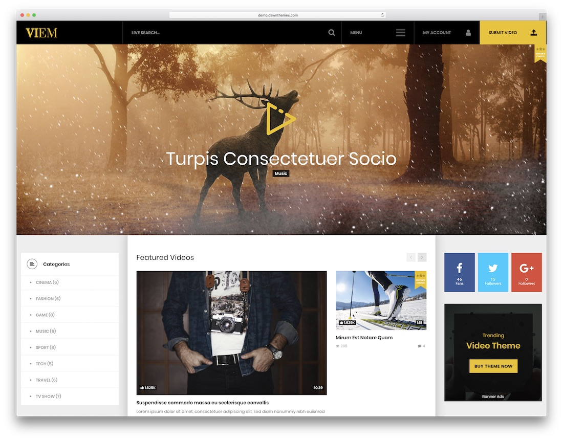 viem content sharing wordpress theme