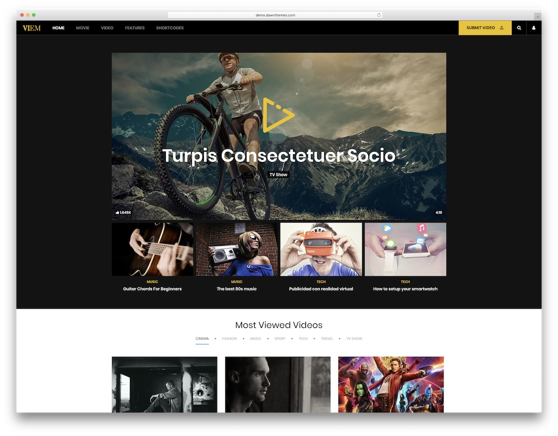 viem wordpress video theme